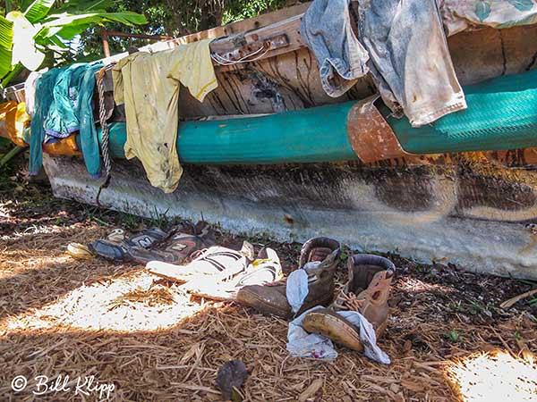 Cuban Chug Photos by Bill Klipp