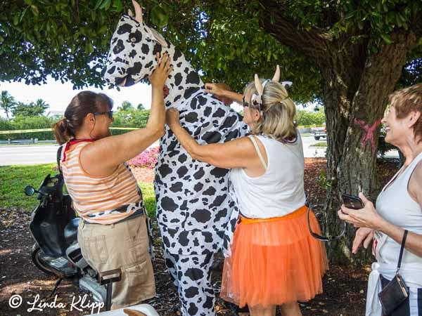 Cow Key Channel Run Photos by Linda Klipp