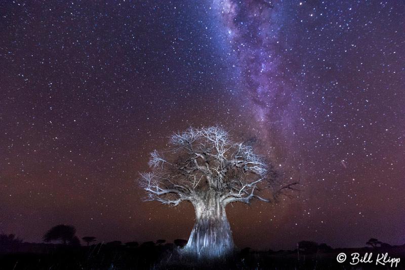 Tanzania Africa photos by Bill Klipp