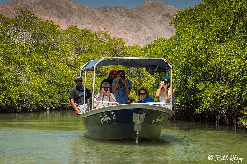 Isla San Jose, Baja Photos by Bill Klipp