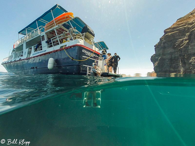 Underwater, Isla Espiritu Santo, Baja Photos by Bill Klipp
