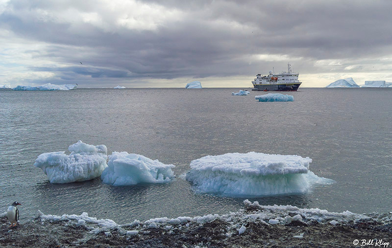 Brown Bluff, Antarctica Sound, Antarctica, Nov 2017, Photos by B