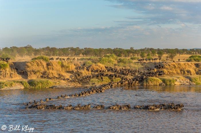 Serengeti National Park, Serian North Alex Walker Camp