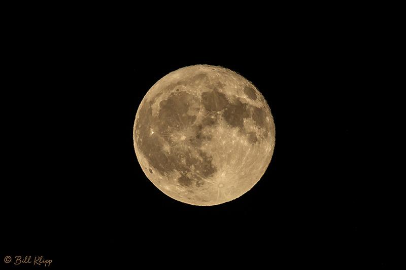 Full Moon, Discovery Bay Photos by Bill Klipp