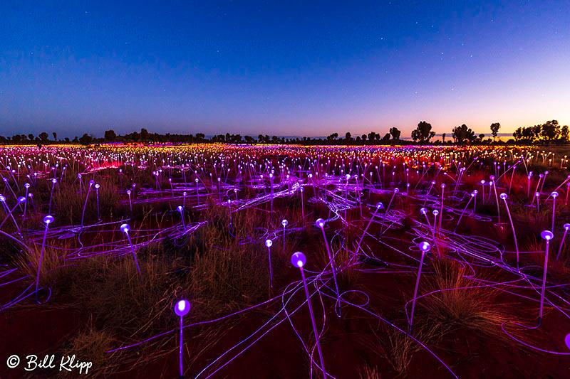 Field of Light, Longitude 131, Ayers Rock, Uluru-Kata_Tjuta, Australia, Photos by Bill Klipp