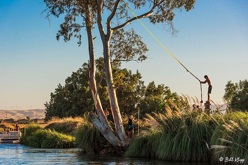 Kellogue Creek Rope Swing, Delta Wanderings, Discovery Bay, Photos by Bill Klipp