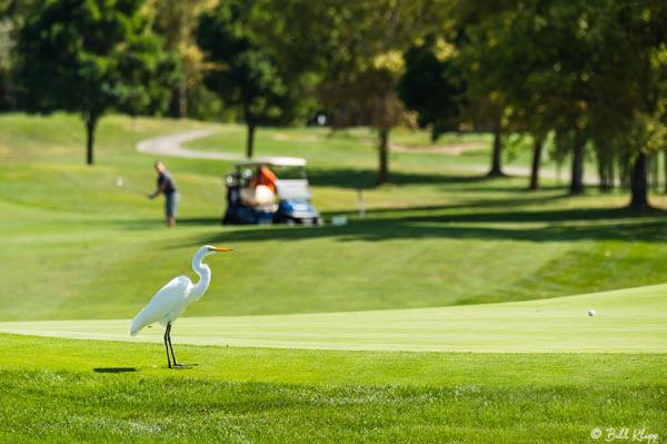 Discovery Bay Golf Club Photos by Bill Klipp