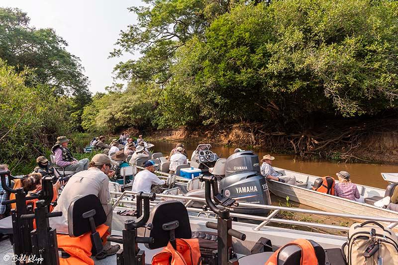 River Boats, Porto Jofre, Pantanal Brazil Photos by Bill Klipp