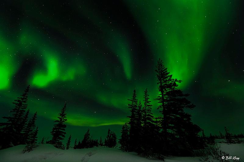 Aurora Borealis, Northern Lights, Aurora Pod, Churchill, Canada Photos by Bill Klipp