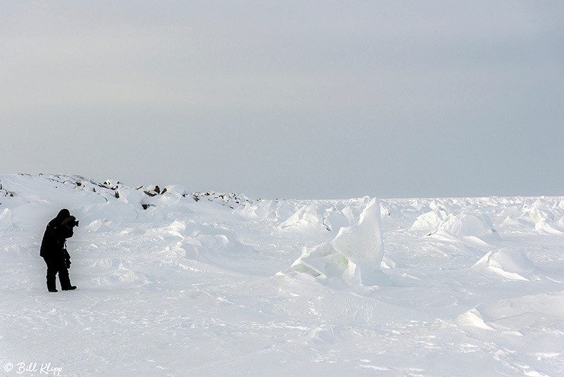 Hudson Bay, Churchill Canada Photos by Bill Klipp