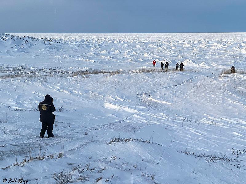 Churchill Canada Photos by Bill Klipp