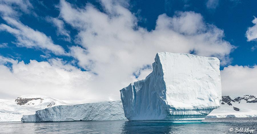 Danco Island, Errera Channel, Antarctica, Nov 2017, Photos by Bi