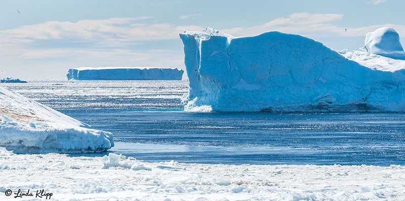 Antarctic Sound, Photos by Linda Klipp
