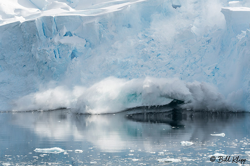 Neko Harbour, Gerlache Straits, Antarctica, Nov 2017, Photos by