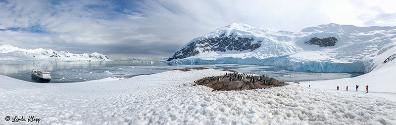 Neko Harbour, Gerlache Strait Photos by Linda Klipp