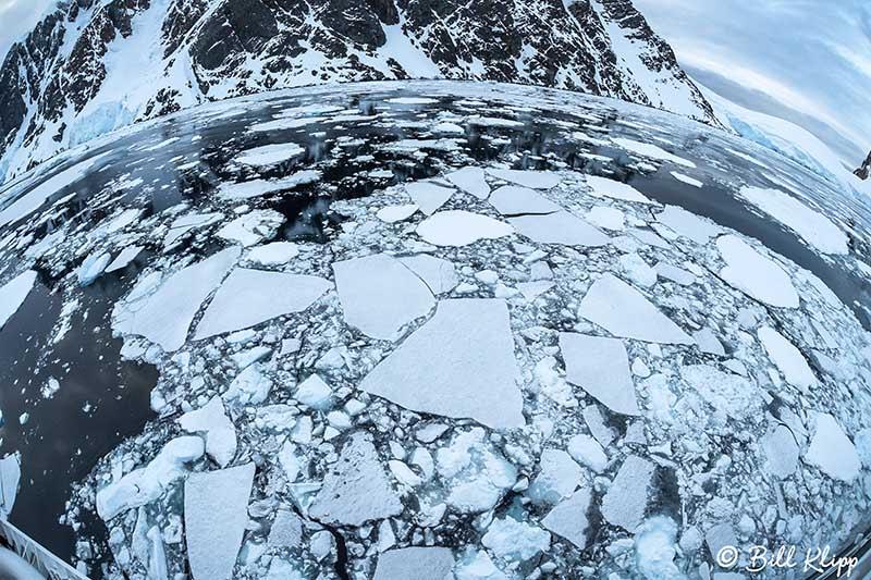 Lemaire Channel, Gerlache Straits, Antarctica, Nov 2017, Photos
