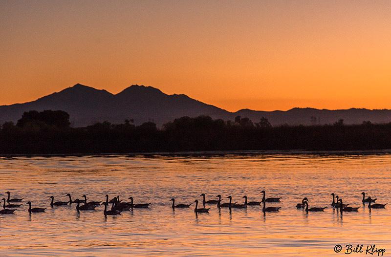 Sunset, Discovery Bay, Photos by Bill Klipp